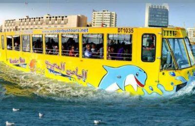 Wonder Bus Tour