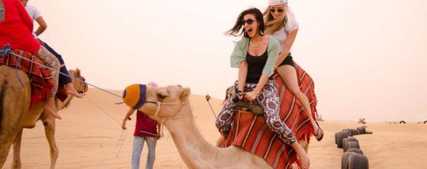 camel trekking desert safari from dubai