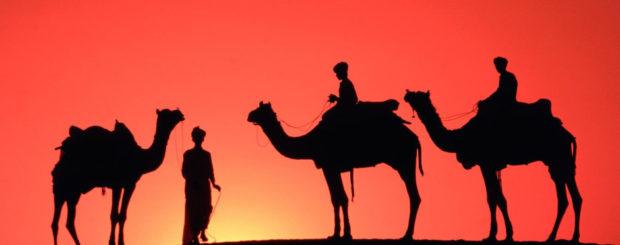 dubai morning desert safari