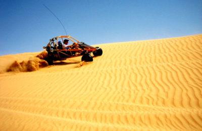 Morning Dune Buggy Safari